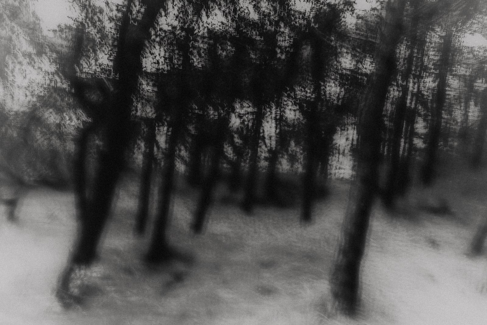 VLIELANDSCAPES2©JitskeSchols